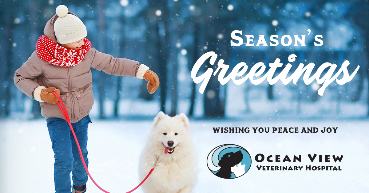Ocean View Veterinary Hospital Holiday Message